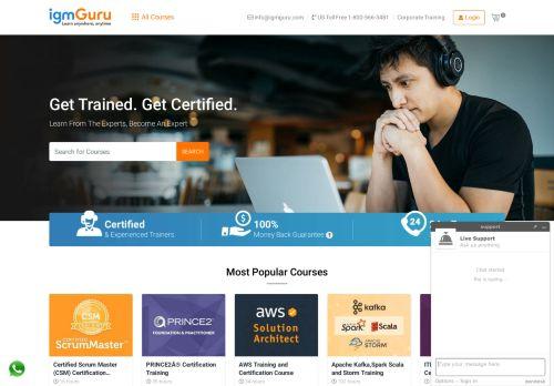 igmguru.com