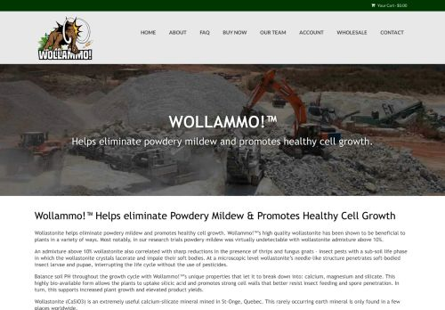 wollammo.com